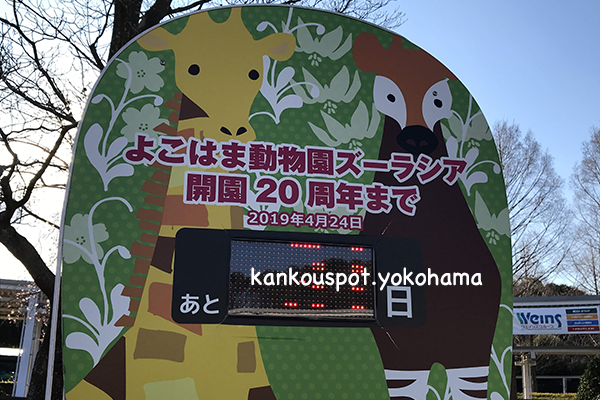 横浜動物園20周年