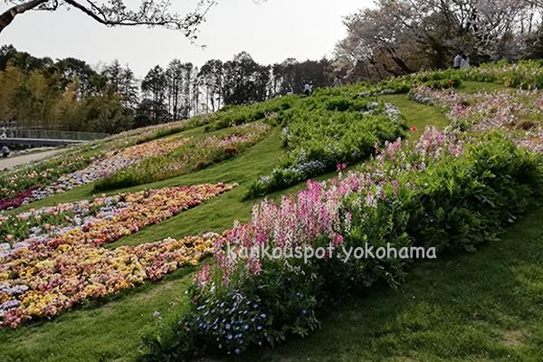 春の里山ガーデンフェスタ