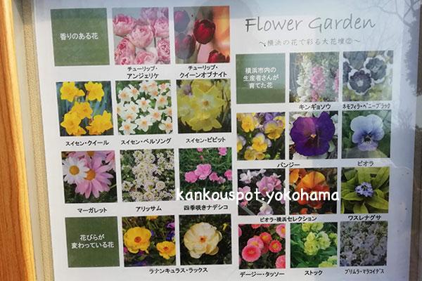 花の案内板